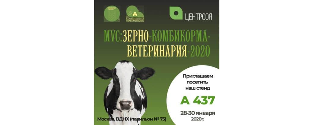 MVC-2020